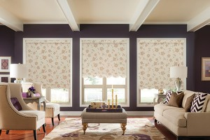 Graber Roller Shades Scalloped Hem Living Room